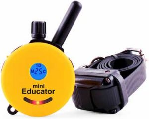 Educator E Collar Remote Dog Training Collar