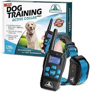 Pet Union PT0Z1 Premium Dog Training Shock Collar