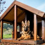 best dog house for adult dogs
